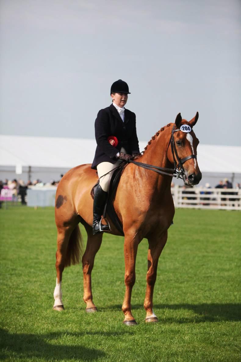 Rare ridden title for Assagart mare
