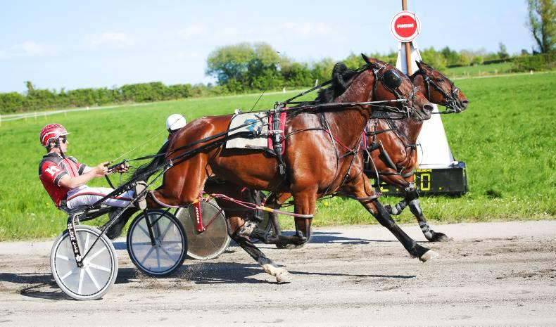 HARNESS RACING: Jet justifies his journey north