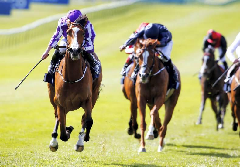 CURRAGH SUNDAY: Even Rocks can't stop Minding