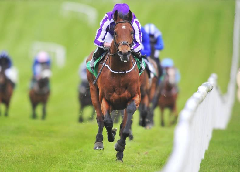 PEDIGREE ANALYSIS: The Gurkha might stay the Derby distance