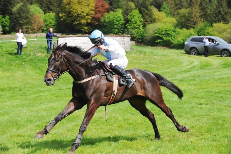 NECARNE SATURDAY: O'Neill is the northern Champione