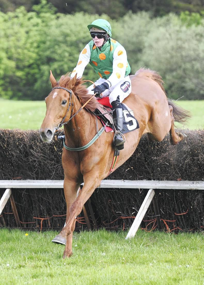 NECARNE FRIDAY: Redhotfillypeppers on fire in maiden win