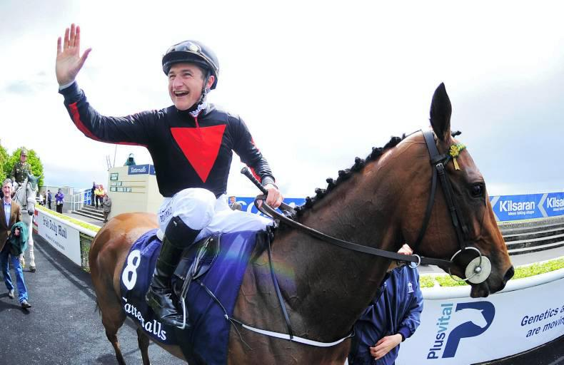 Classic winner's dam sold for a snip