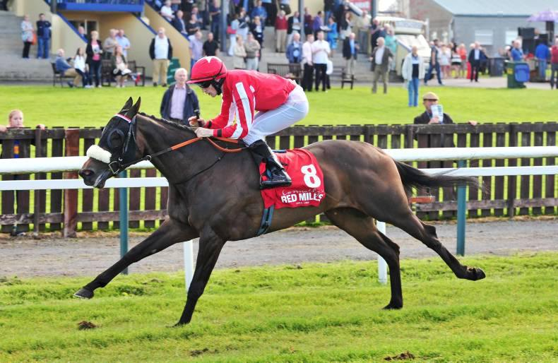 Ostatnia makes it third time lucky at Tipperary