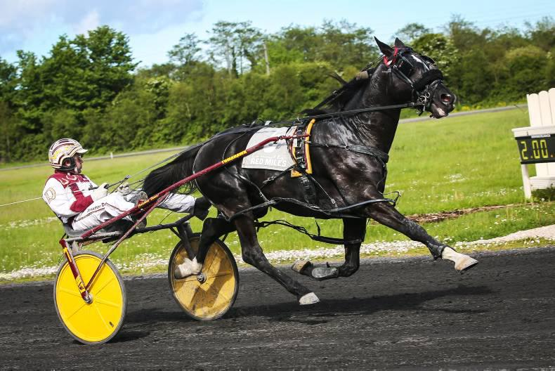 HARNESS RACING: Bath Lane works hard for winning return