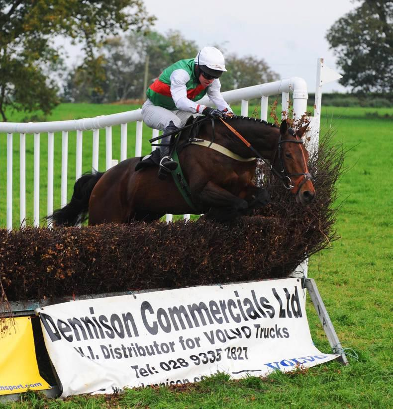 BRITISH POINT-TO-POINT:  McBratney opens his Stratford Account