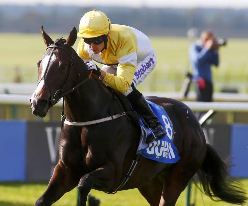 PEDIGREE NOTES: Stakes winners from 23rd to 29th May