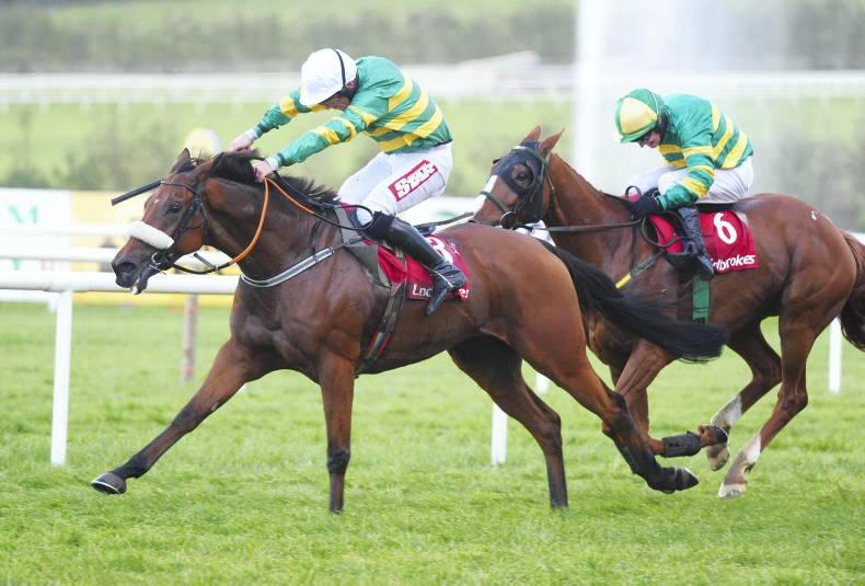 Shanpallas lands gamble at Ballinrobe