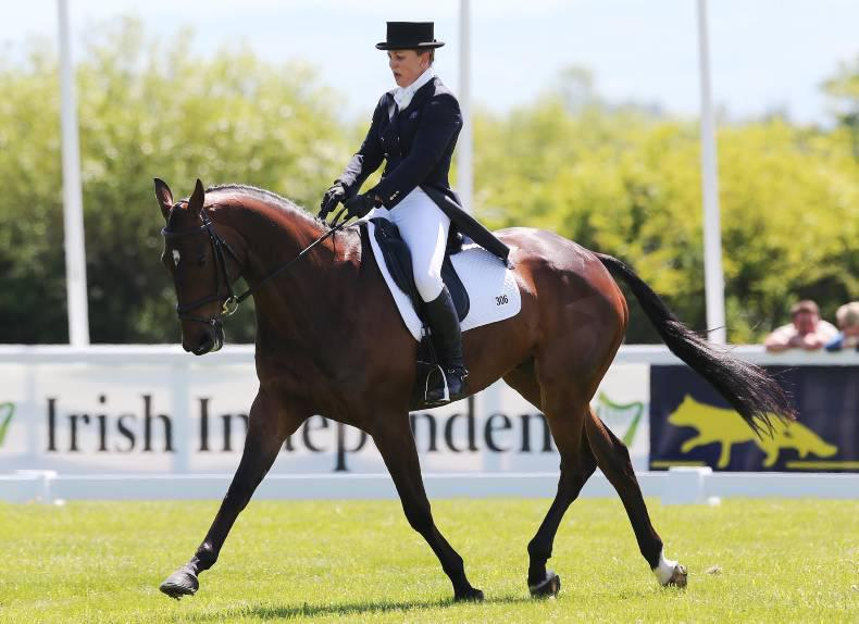 Birch leads The Irish Field CCI***