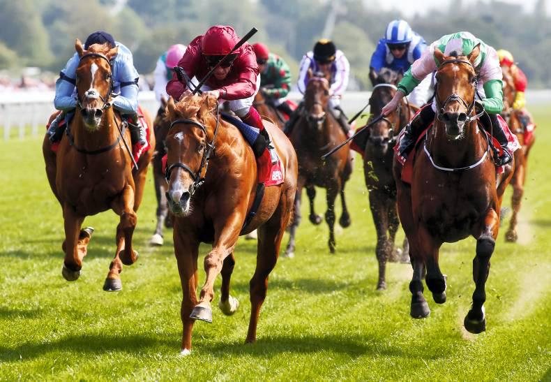 Massaat can land fairytale Derby win for Burrows