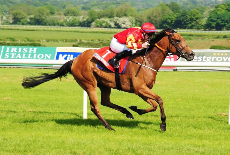 NAAS SUNDAY: Only way is up as Only Mine impresses