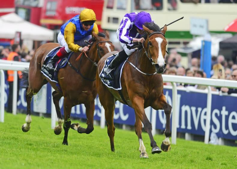 VIDEO: Serious trouble cannot stop brilliant Minding