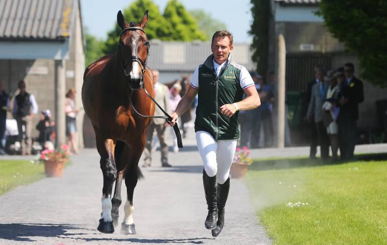 Padraig McCarthy in pole position in The Irish Field CCI*** at Tattersalls