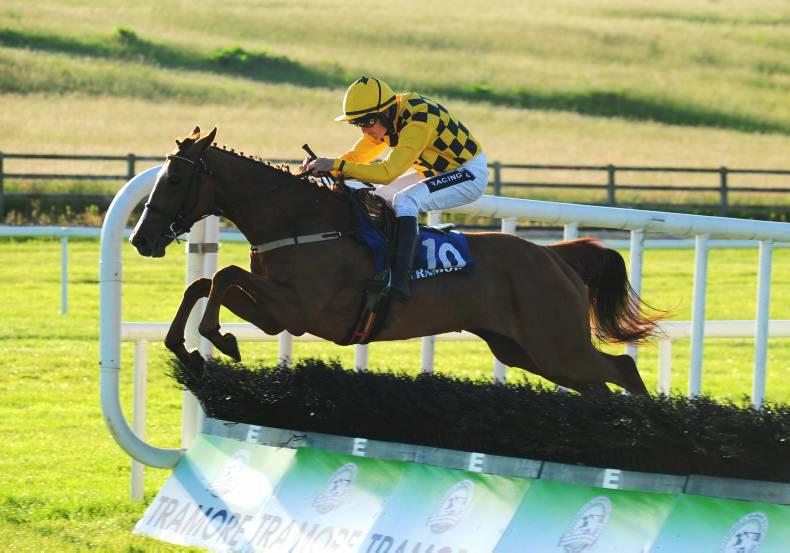 TRAMORE FRIDAY: Muthaza ready for novice hurdle campaign
