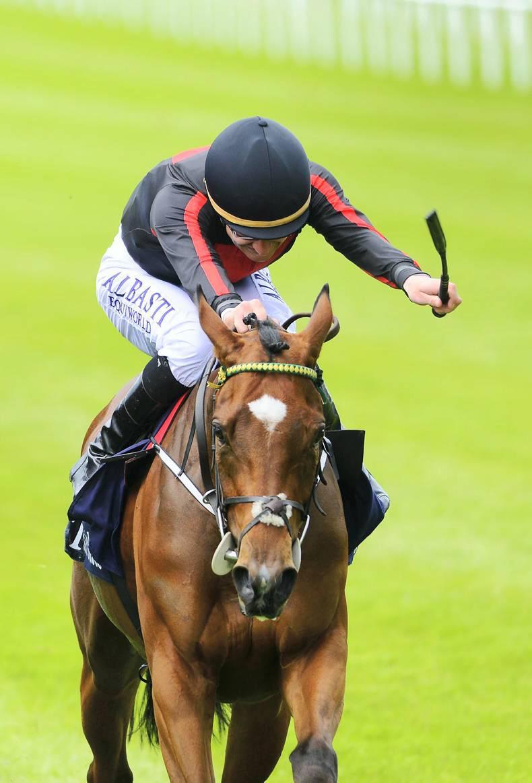 GOFFS LONDON SALE: Royal sale offers racing talent