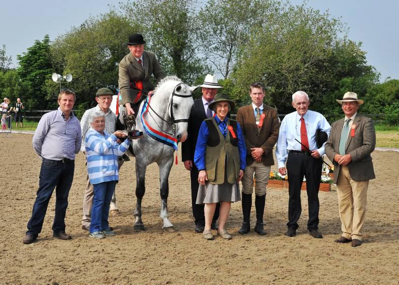 Champions galore amid record entries