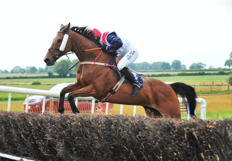 BALLINGARRY MONDAY - ORMOND FOXHOUNDS:  O'Connor wins as Codd crowned champion