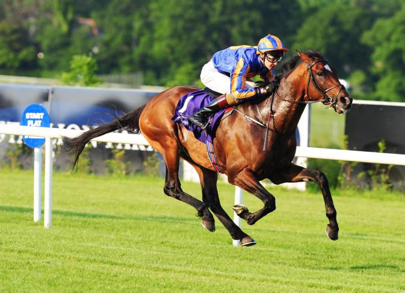 Order Of St George faces 17 rivals in Gold run at Royal Ascot