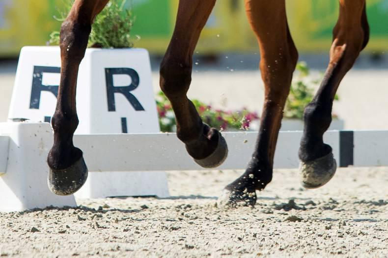 Irish pony dressage team seventh at Hagen
