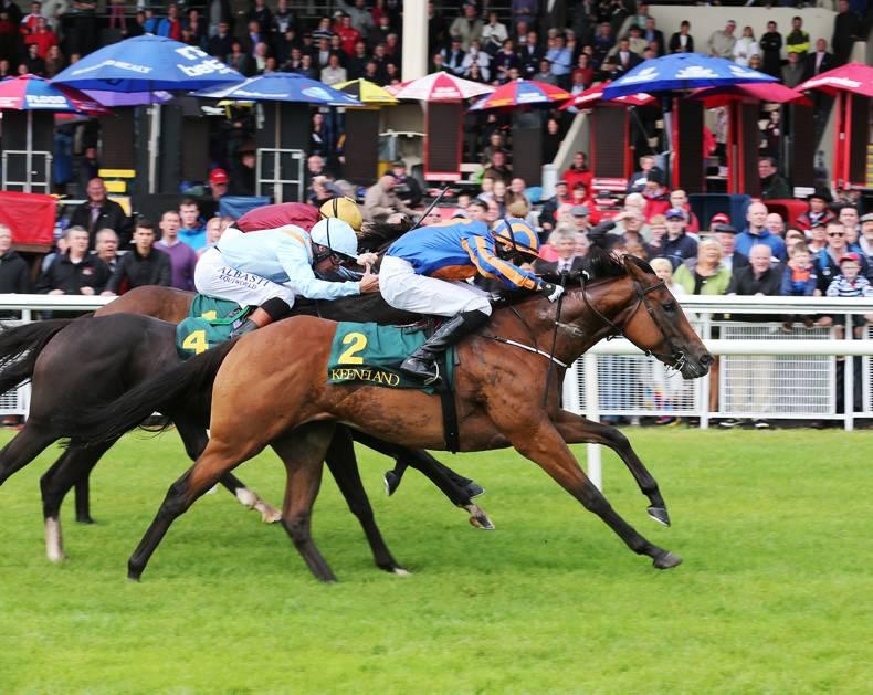 Dick Whittington delivers in Ballycorus at Leopardstown