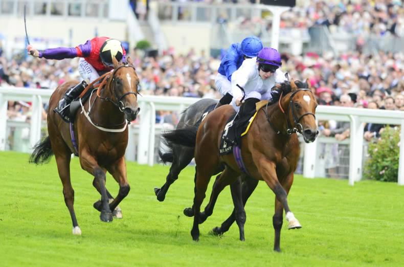 ROYAL ASCOT: Prince Of Lir lords the Norfolk Stakes