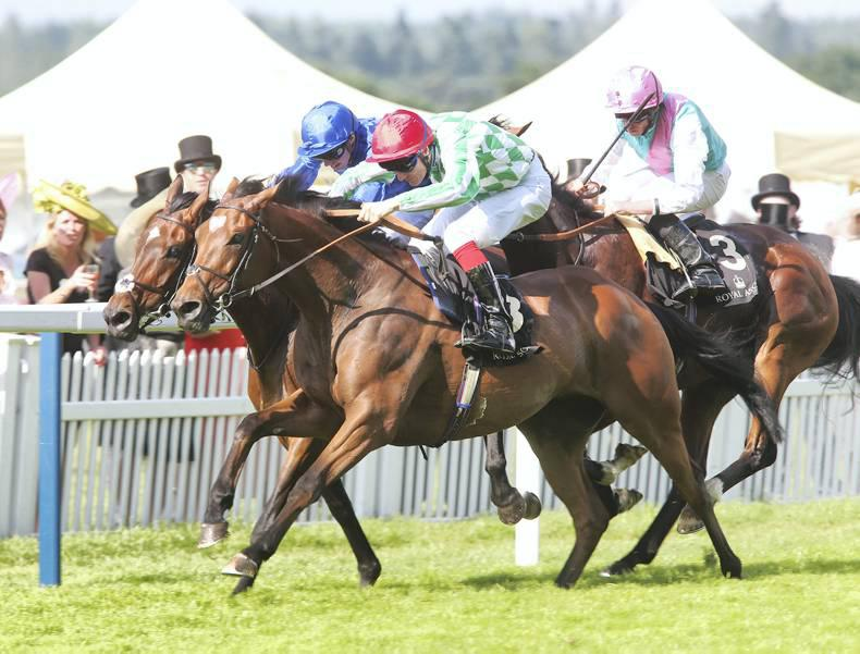 ROYAL ASCOT: Controversial finish as Kinema survives inquiry