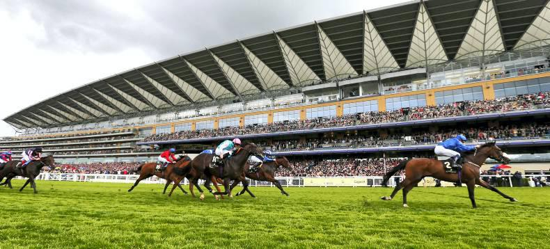 DONN MCCLEAN: Ascot keeps you wanting more