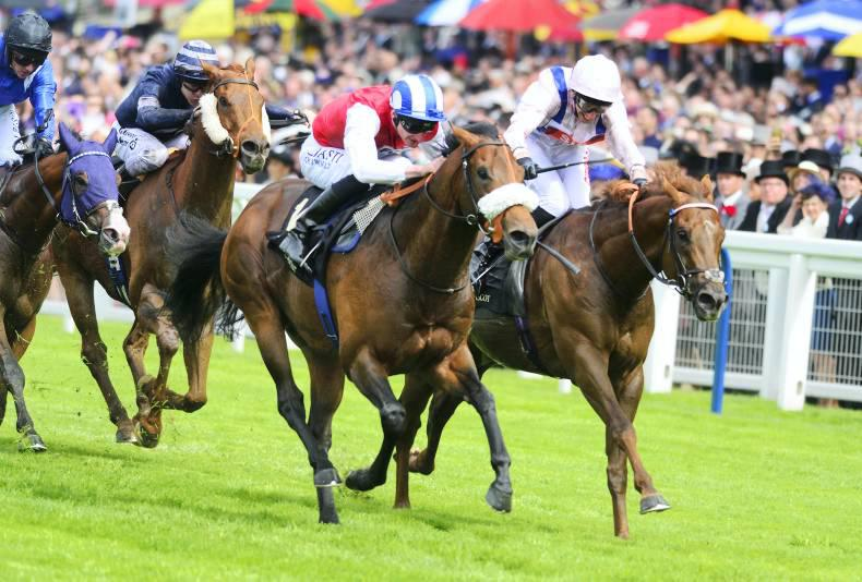 ROYAL ASCOT: Profitable holds on strongly while Mecca's Angel fades