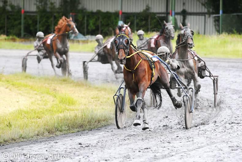 HARNESS RACING: Howard's delight as President gets the vote
