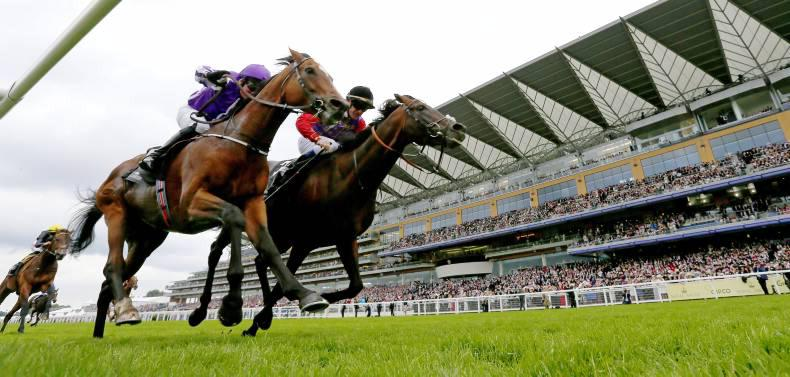 ROYAL ASCOT: Dartmouth holds on in thrilling finish