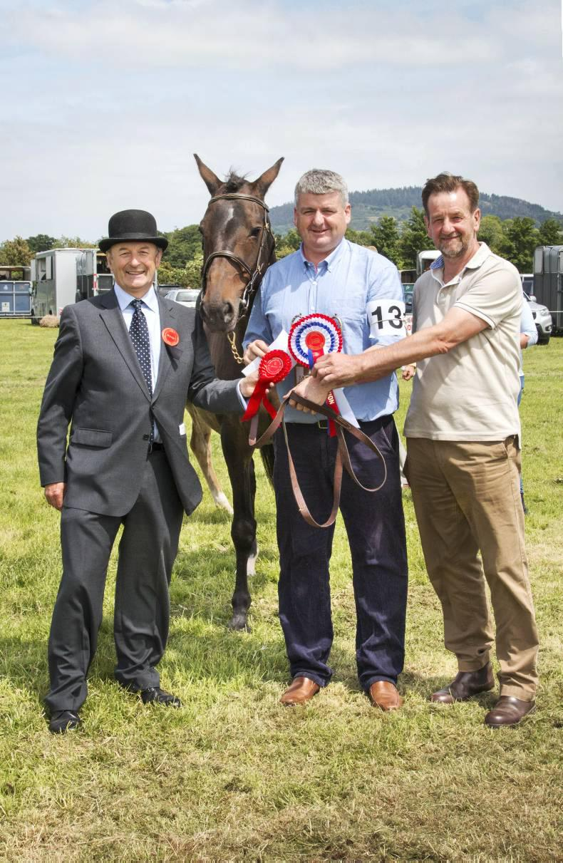 Award for breeder of Prince Mayo