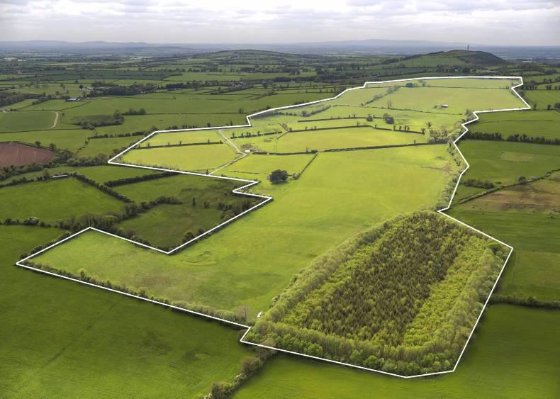 PROPERTY: Endless potential on the Curragh