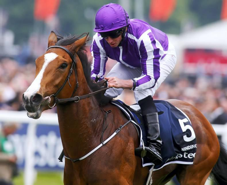 CURRAGH SUNDAY: Mighty Minding to take fifth Group 1