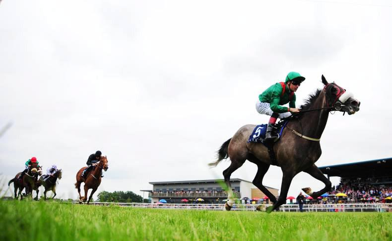 DOWN ROYAL SATURDAY: Simmanka speeds home in Ulster Oaks
