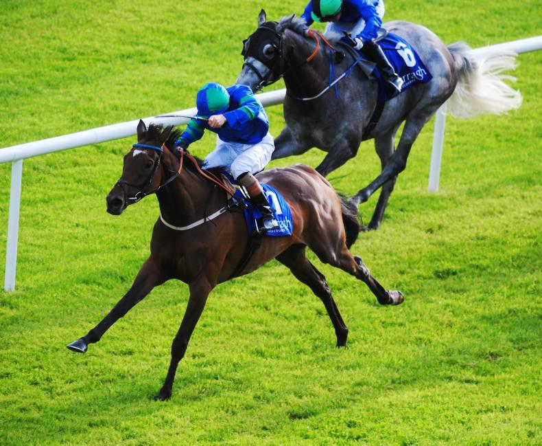 CURRAGH FRIDAY: Avenante pulls off a miracle