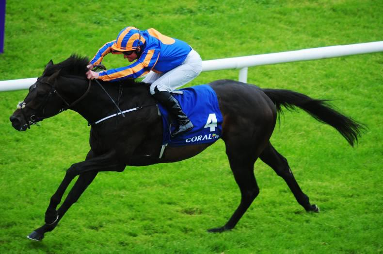 PEDIGREE NOTES: Notable blacktype winners and freshman sire results