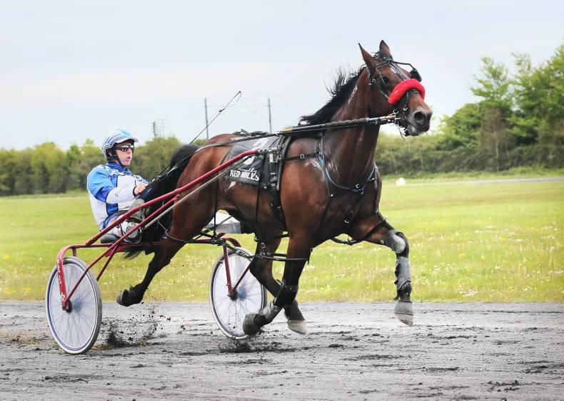 HARNESS RACING: Irish fare badly at Musselburgh