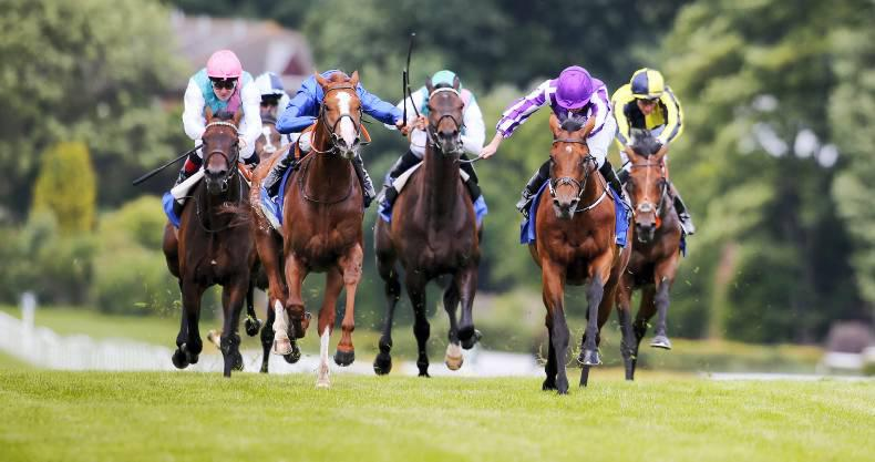 Ballydoyle endure near misses