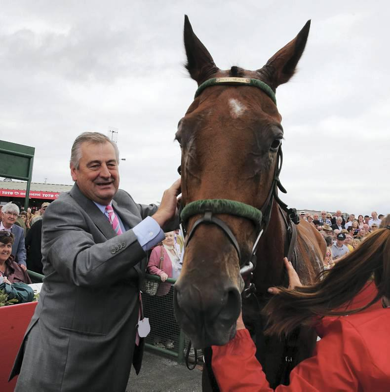 Galway Plate and Hurdle looking hotter than ever