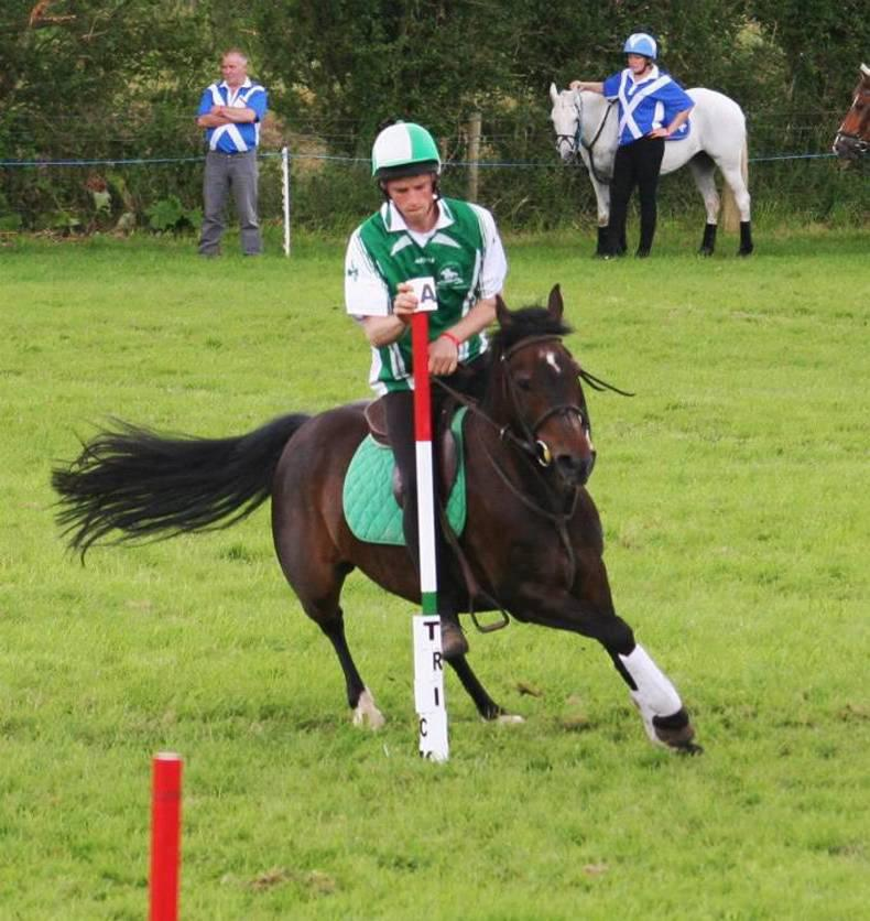 MOUNTED GAMES: Ireland and New Zealand top the polls