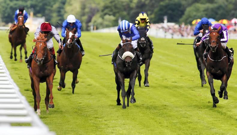 Galileo Gold ready for Goodwood rematch with The Gurkha
