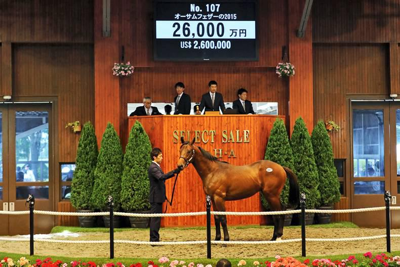 Deep Impact made at Japanese Select Sale