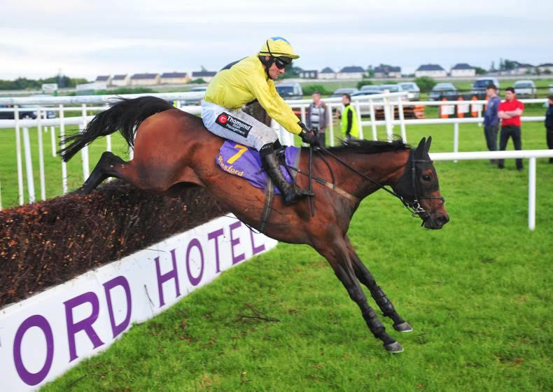 Lilly The Lioness roars home at Killarney