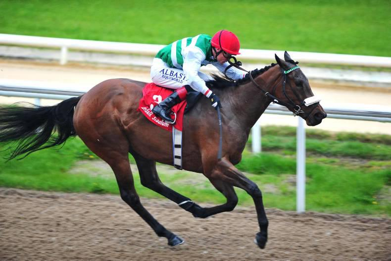 Chiclet revels at Dundalk