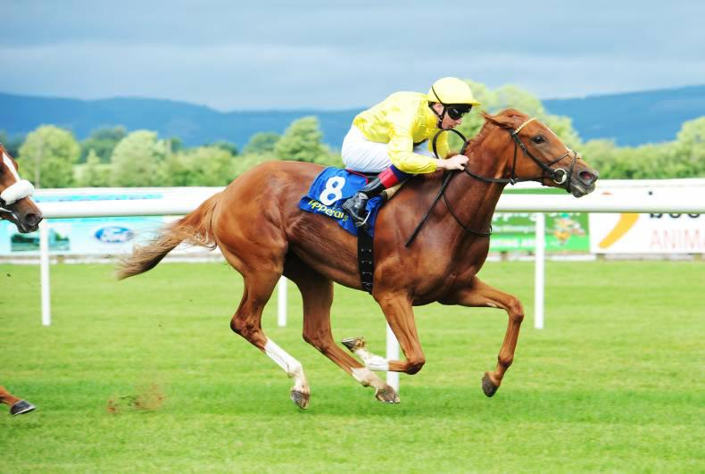 PEDIGREE ANALYSIS: Nathaniel off the mark with a double