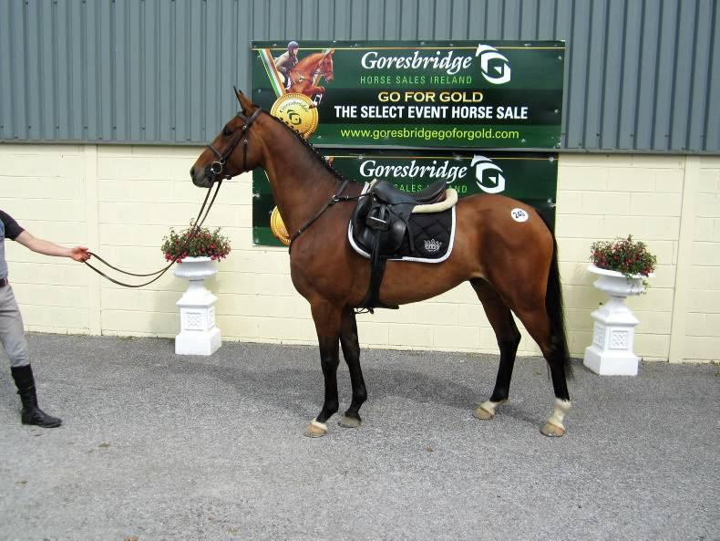 GORESBRIDGE SALES:  Flying trade returns top price of €10,500