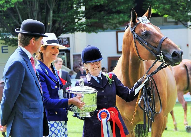 Dublin Horse Show preview: Hankalaine bids for Coote Cup treble