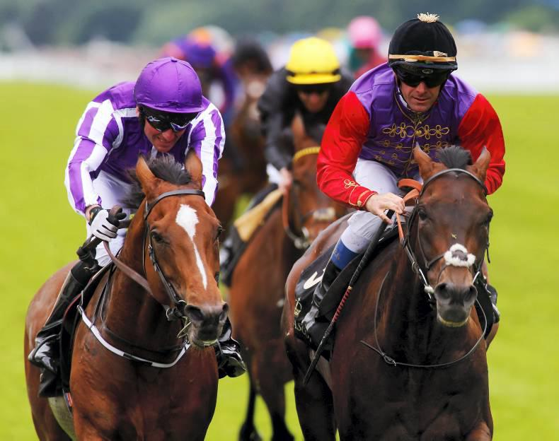 Aidan O'Brien poised to fly solo at Ascot with Highland Reel