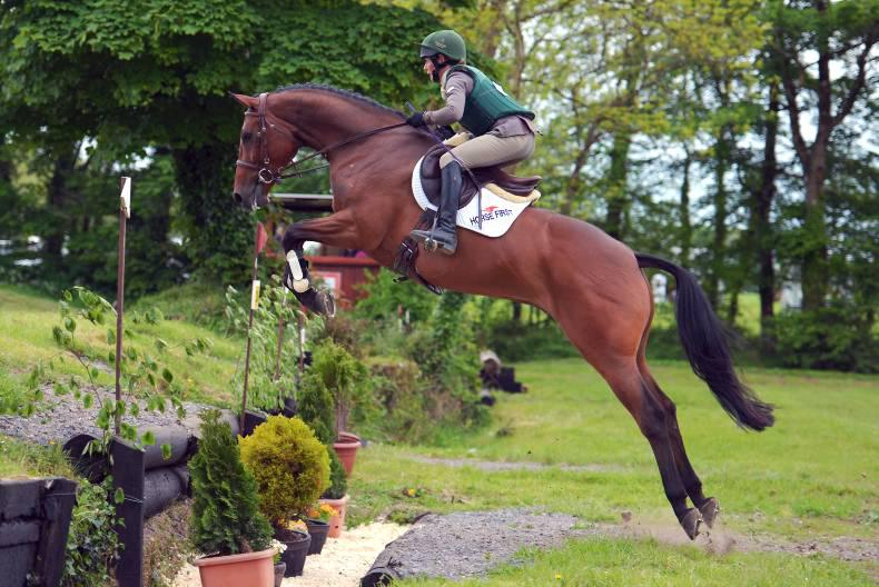 Dublin Horse Show preview: Ennis has strong hand for young event horse class
