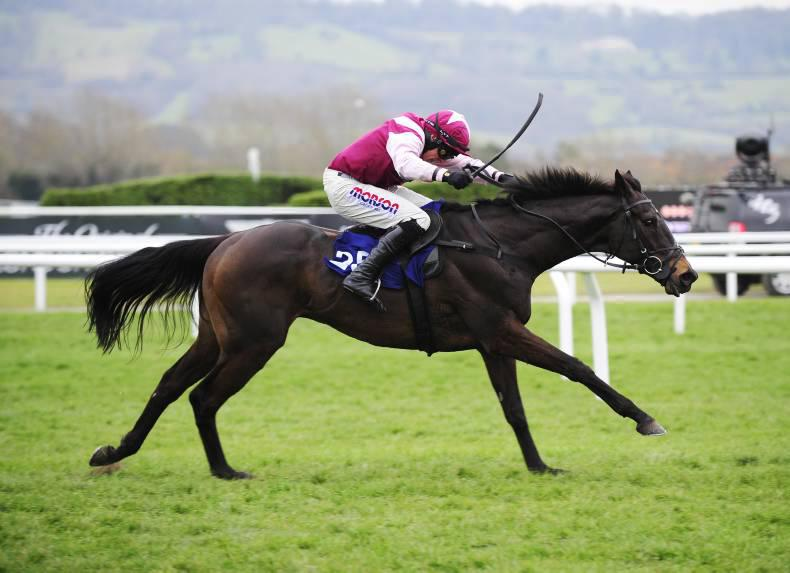 GALWAY: Superb Story aimed at Guinness Galway Handicap Hurdle